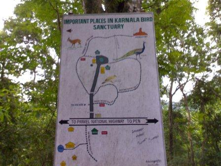 NHAI to spend Rs. 58 crore to mitigate impacts on Wildlife in Karnala Bird Sanctuary