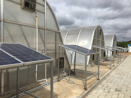 Tamil Nadu Mango farmers install Green house solar dryers adapting Covestro's technology in pursuit of generating additional revenues