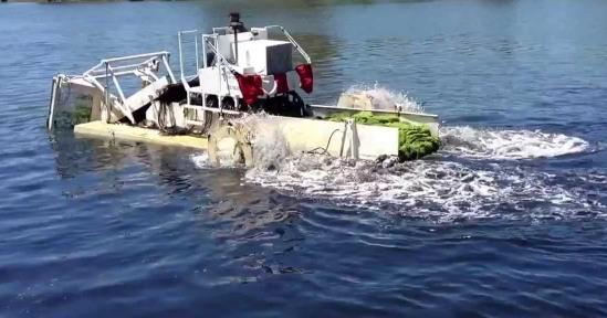 BHEL forays into Lake Purification under Smart City segment