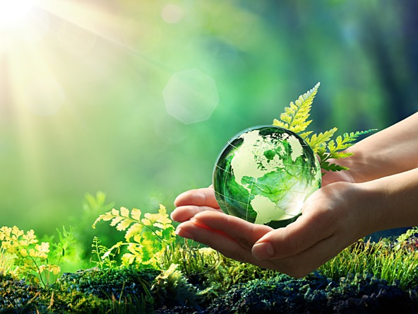 Need for environment friendly businesses